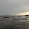 【穴釣り】苫小牧西港 メシマズ料理人(´・ω・`)