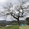 水の神さまを呼ぶ祭り 福岡県小倉南区木下