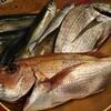 本日の漁師さん直送の魚たち(^o^)