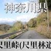 【動画】神奈川県 尺里峠 (尺里林道)