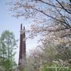 野幌森林公園 撮影散歩