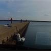 波切港の堤防で 泳がせ釣り ジギング 巨大魚