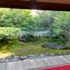 特別公開!6月限定で楽しめる、京都・東林院の「沙羅の花を愛でる会」