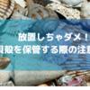 放置しちゃダメ!貝殻保管の注意点6選