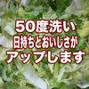 【最新版】50度洗いで野菜を洗うと日持ちとおいしさがアップ!