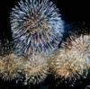 長岡花火の次はココ!日本三大花火の土浦花火は10月開催!