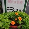 (閉店) 喫茶ライン/北海道釧路市