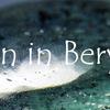 インクルージョンが特徴のベリル:Inclusion in Beryl