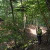 夏の終わりのヌル谷遊山 森の道