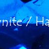 アウィナイト(アウィン):Hauynite(Hauyne)