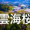 『DJI Googles Japan 雲海桜』話題のドローン空撮 [初公開]
