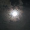 月下飲酒瞑想 中秋の名月と共に