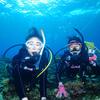 ♪到着体験ダイビングin慶良間海域♪〜沖縄体験ダイビング〜