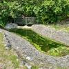 天の川(沖縄県西表島)