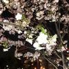 さようなら2018年度。桜の季節。トルコリラは相変わらず混迷。