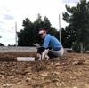畑の石除去から完成まで 初日