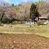 奈良池(神奈川県横浜)