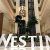 ウェスティン リゾート【グアム】旅行記!SPG・マリオットの上級会員としてプール・ビーチ・宿泊・ラウンジなどを堪能!