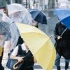 今年の台風の傾向と台風に対する心得!