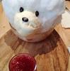 【シンガポール旅行】カフェ巡りで白クマと遭遇