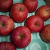 りんごがたくさん!