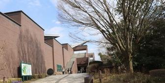 ミュージアムパーク茨木自然博物館の体験記と感想:恐竜博物館+広大なパークで遊べる!