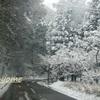 幻想的な遠坂峠(1月25日)