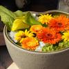 行田市「花手水week」を訪ねてきました (その2):八幡通りは花でいっぱい【埼玉の花】