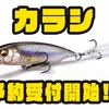 【メガバス】i字とドッグウォークの2WAYフィネスベイト「カラシ」通販予約受付開始!