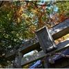 八坂神社(猪名川町木津)の風景 part11