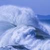 「1mの津波何て怖くねぇ!見に行こうぜ!」←致死率100%です