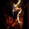 都会の中で焚き火でレインボーフレームが体験できるイベントあります 舞洲リゾート ホテル・ロッジ舞洲