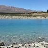 【NZ南島旅行】星空で有名なテカポへ!湖がとってもきれい!