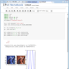 Vagrant+VirtualBox環境の構築7(IPython Notebook+CentOS)