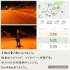 2018年12月1日(土)【キツネがちらっと・・・&ベーコンの仕込みの巻】