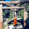 11月25日★東京リクエスト開催『千年瞑想会』~龍脈むすびあそび❤︎~