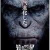 『猿の惑星:新世紀(ライジング)』APE SHALL NEVER KILL APE