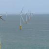 Tarnet Wind Farm開発経緯
