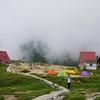 8月アルプス第一弾 花三昧の朝日岳