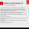 Adobe Acrobat Reader DC 19.010.20064