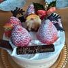 菓子工房アントレ (ENTREE) - 船橋市海神 ケーキ・スイーツの名店でクリスマスケーキを買いました!