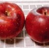 初リンゴは恋空・スイカを食べずに夏は終わる