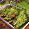 市場を歩く-ตลาดศาลายา/Salaya Market-