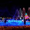 クリスマスのイルミネーション スカイツリー~光の祭典
