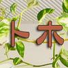 ペットホテル・朝夕食後の遊び・健康チェック(わんわん柏)