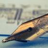 万年筆は長く使っている。