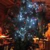 第54話 クリスマスツリー点灯