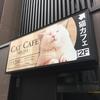 ごはんタイムに悶絶、猫カフェMoCHA(モカ)秋葉原店に行ってみた。(千代田区外神田)
