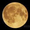十六夜望月(月齢15.574)