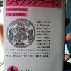 シャクンタラー姫 カーリダーサ 著 / 辻直四郎(翻訳・解説)